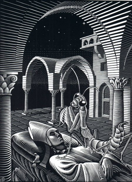 2headedsnake:  m.c. escher - dream