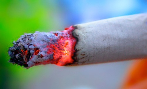 "Smokers of the world, quit! Today is ""World No Tobacco Day"" Never a bad time: The new, concerning report on cell phone use isn't the only place you'll hear the word ""carcinogenic"" being used today; May 31st is World No Tobacco Day, a cause that could probably benefit from a slightly less clunky title. The World Health Organization estimates that some 6 million people die each year from tobacco-related illness. Anti-smoking measures within the U.S. have blossomed over the last decade, with smoking bans in public places, restaurants, and bars becoming more and more prevalent across the states — check here for a list of smoking bans applicable in your area. source Follow ShortFormBlog"