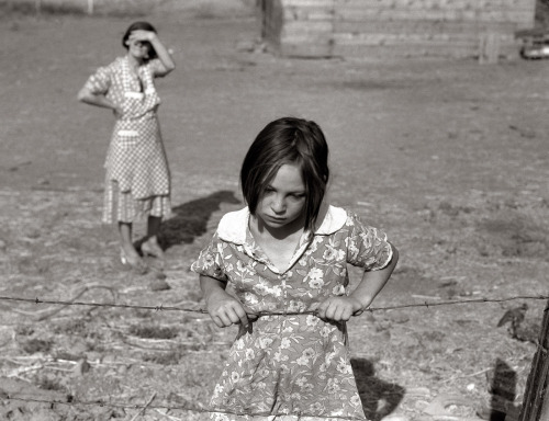 "Dorothea Lange ""One of Chris Adolph's younger children"" Farm Security Administration Rehabilitation clients Washington, Yakima Valley, near Wapato, August 1939 [via Shorpy] Thanks to liquidnight"