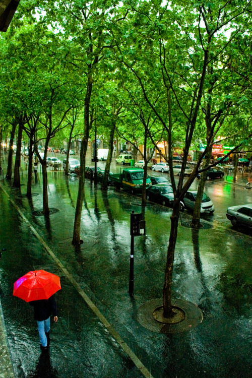 sunsurfer:  Summer Rain, Paris, France  photo by eole