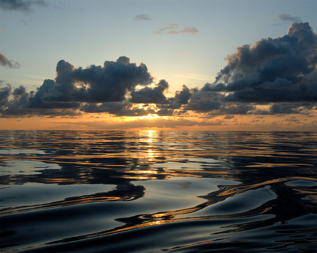 Happy World Ocean Day!  Image description: A sunset viewed from Kure Atoll, located near Midway Atoll in the Northwestern Hawaiian Islands. An atoll is an island of coral that encircles a lagoon partially or completely. Photo from the National Ocean Service on Flickr.   Learn about the world's oceans from the National Ocean Service.