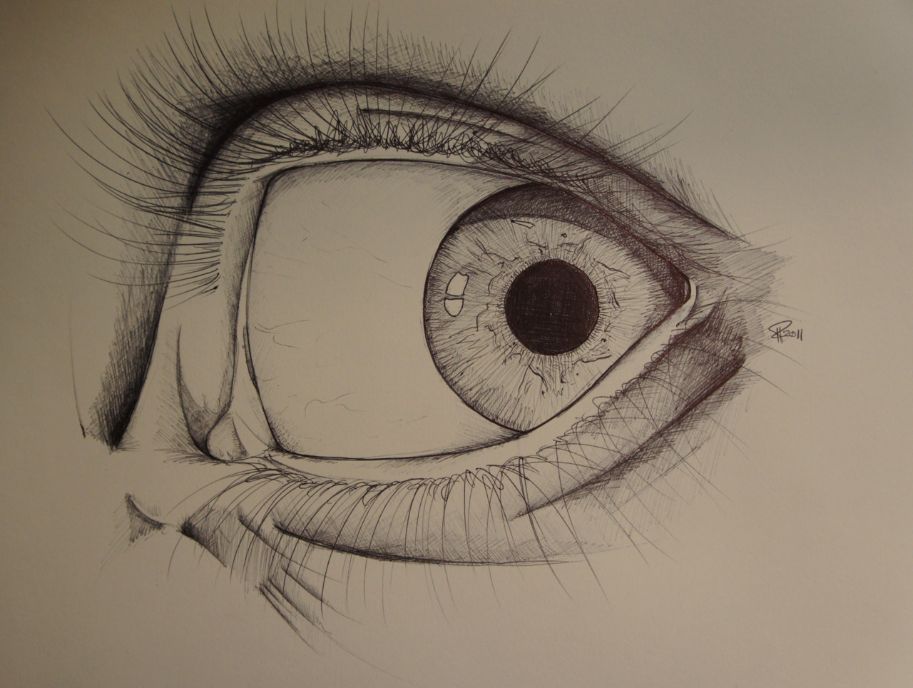 plasmaterial:  My eye in Bic ballpoint.