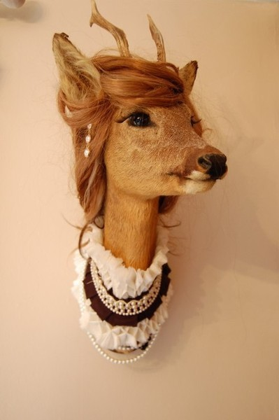 Alright, If I'm getting a stuffed deer head, this is EXACTLY what I'm doing with it.