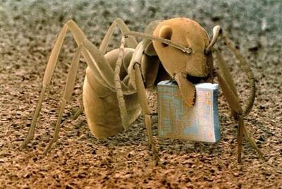alanajoy:  An ant holding a microchip. From the book Microcosmos.