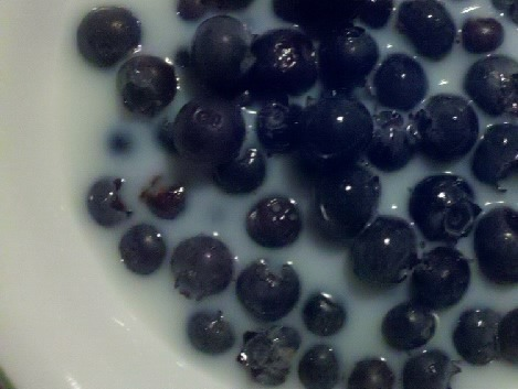 """Blueberries n' Cream""  6/2/2011"