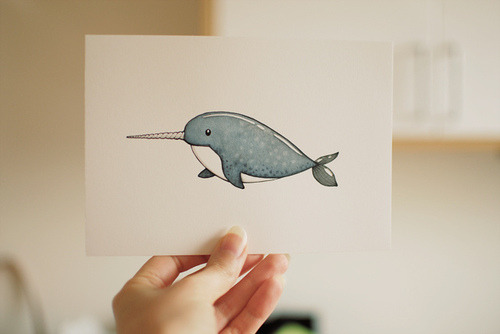 narwhals, narwhals swimmin' in the ocean, causin' a commotion because they are so awwesome