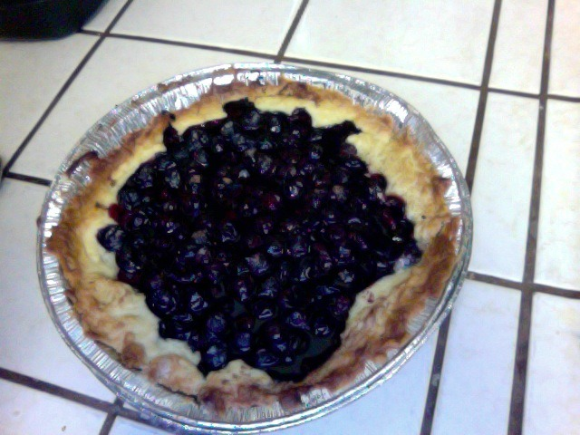 Vegan Blueberry Tart Crust: 1/2 cups of flour 3/4 cups of hard, refrigerated Earth Balance margarine  1/2 cup of sugar  1/2 - 3/4 cups of cold water Filling 2 cups of fresh blueberries 1/2 cup of sugar 1 tablespoon of flour cinnamon Preheat the oven to 400 Degrees First, make sure the butter your using is cold. Put it in the freezer for about 15 minutes. Next, mix the sugar and flour with the butter. Mash it with a fork until it resembles sand. Next, add water until it looks like dough. Put the dough in the freezer for 45 minutes until it isn't sticky. Put the crust in the pan, make it as thick or as thin as you desire. Put it back in the fridge for five minutes. Next mix the blueberries with the sugar, and the flour. Add a little water to the filling. Take the pie crust out and fill it with the filling. Sprinkle the cinnamon on top. Put it in the oven for 60 minutes, or until golden brown.