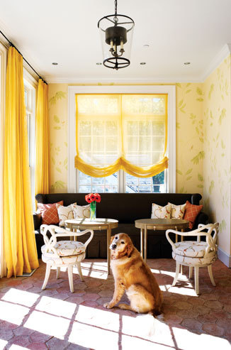 Yellow sheers and a happy dog complete this room!