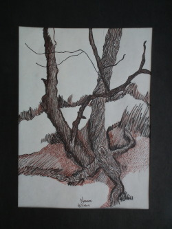 Sepia Tree Sketch