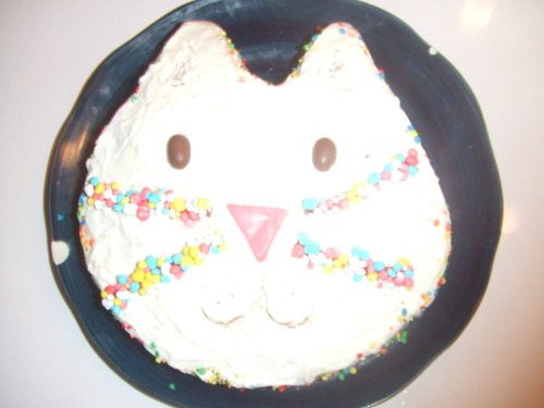 cat cake! nerd rope whiskers ftw.