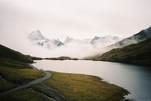 randomstrings:  (by gp2305)
