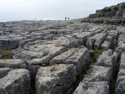 Limestone Pavement, Malham, Yorkshire.