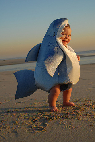 epic4chan:  iz kyoot:  Just a baby shark.  画