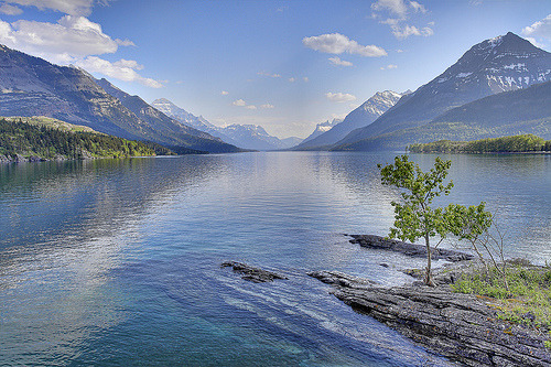 infidus:  Waterton June 19 10 02 (by sloppyshooter)