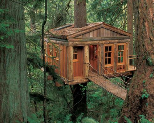This charming treetop cottage is just one of the many treehouse lodgings available at Pete Nelson's Treehouse Point in Issaquah, Wash. This treehouse sits partway up a 300-year-old, 160-foot-tall Sitka Spruce and boasts skylights, built-in cedar beds and handmade quilts. The world's most stunning treehouses