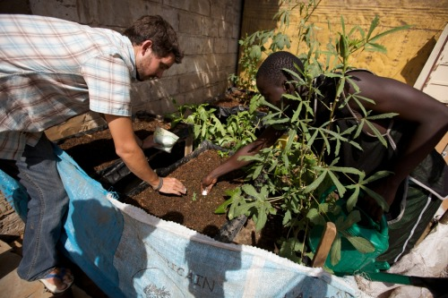 A Peace Corps Volunteer takes what he learned working on an urban garden at a hospital to help local families to develop their own sustainable food sources. Senegal - 2007