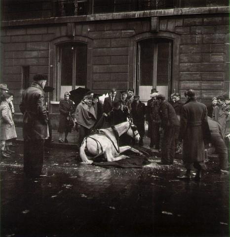 Robert Doisneau—The Fallen Horse <br />Paris, 1942