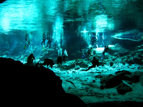 560. Go diving at Cenote Dos Ojos in Mexico