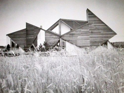 sea ranch style angled wood house in a field; visualnotebook:   Andrew Michael Geller