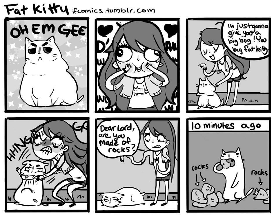 ifcomics:  Fat Kitty   I did this comic just for the expression in the second panel.  & for the rock joke that my brother always uses.