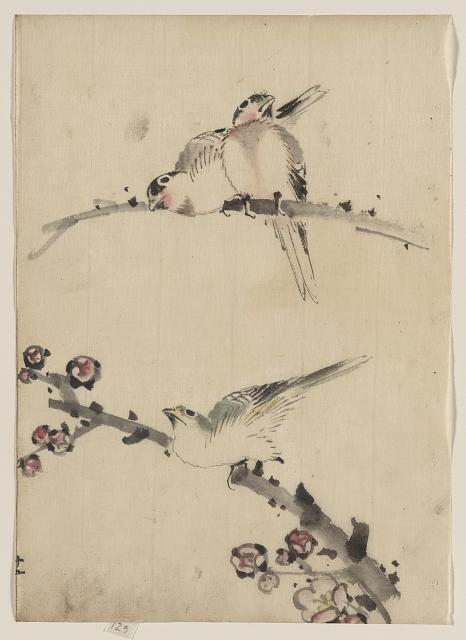 Three birds perched on branches, one with blossoms  Katsushika, Hokusai, 1760-1849.  Date Created/Published:  					[between 1830 and 1850]  link