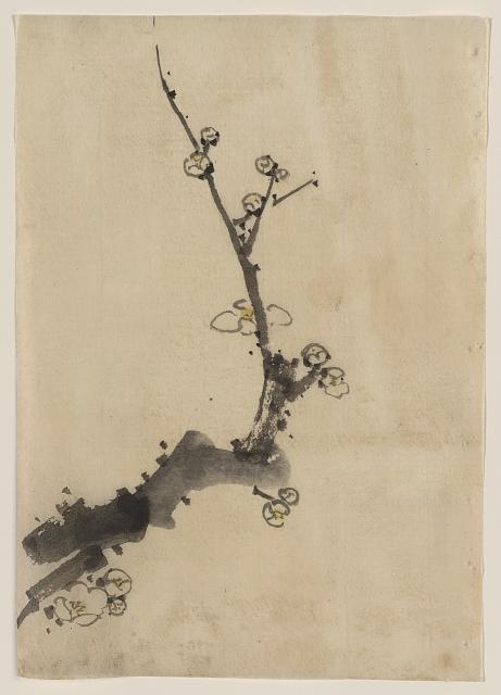 Fruit tree branch with blossoms     			 	Katsushika, Hokusai, 1760-1849.  Date Created/Published:  					[between 1830 and 1850]  link