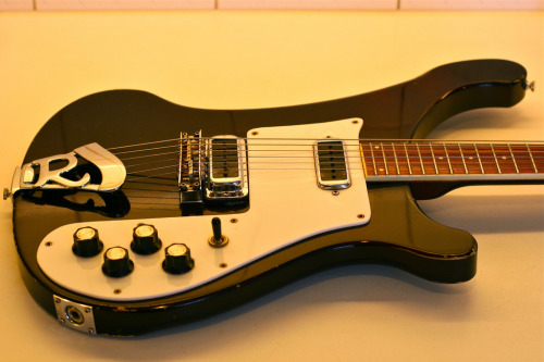 70s Rickenbacker Model 480 Photo by Eirik Lye