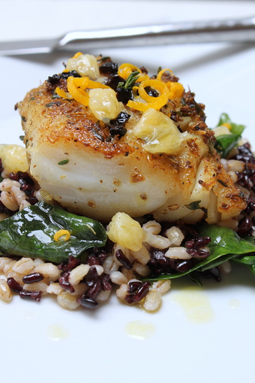 fennel and thyme crusted cod with meyer lemon, oil-cured olives and black rice from Elizabeth of Saffron Lane
