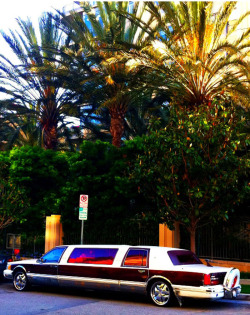 banged up limo with strawberry tinted windows