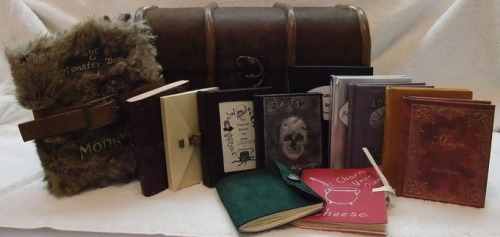 Harry Potter's trunk and 12 of his books (All handmade by bookcrazzzy) (Submitted by Margie)