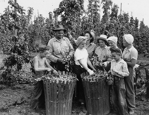 Ernst Family at Horst Hop Ranch, 1946 (by Oregon State University Archives)