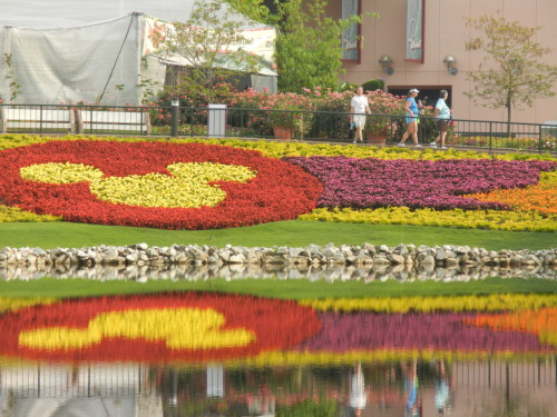 EPCOT's Flower and Garden Festival!