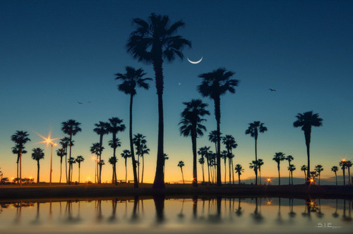 Dusk, Mission Beach, San Diego, California  photo by leesie