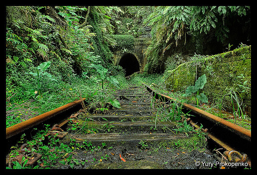 landscapelifescape:  Helensburgh NSW Australia Abandoned Helensburgh railway station, closed in 1915 Abandoned (by -yury-)