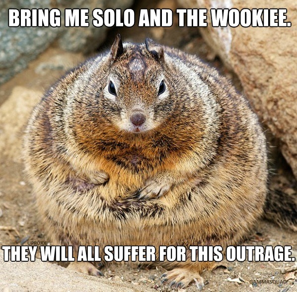 theforce:  Jabba the Squirrel  jajajajajaja, notable… xD