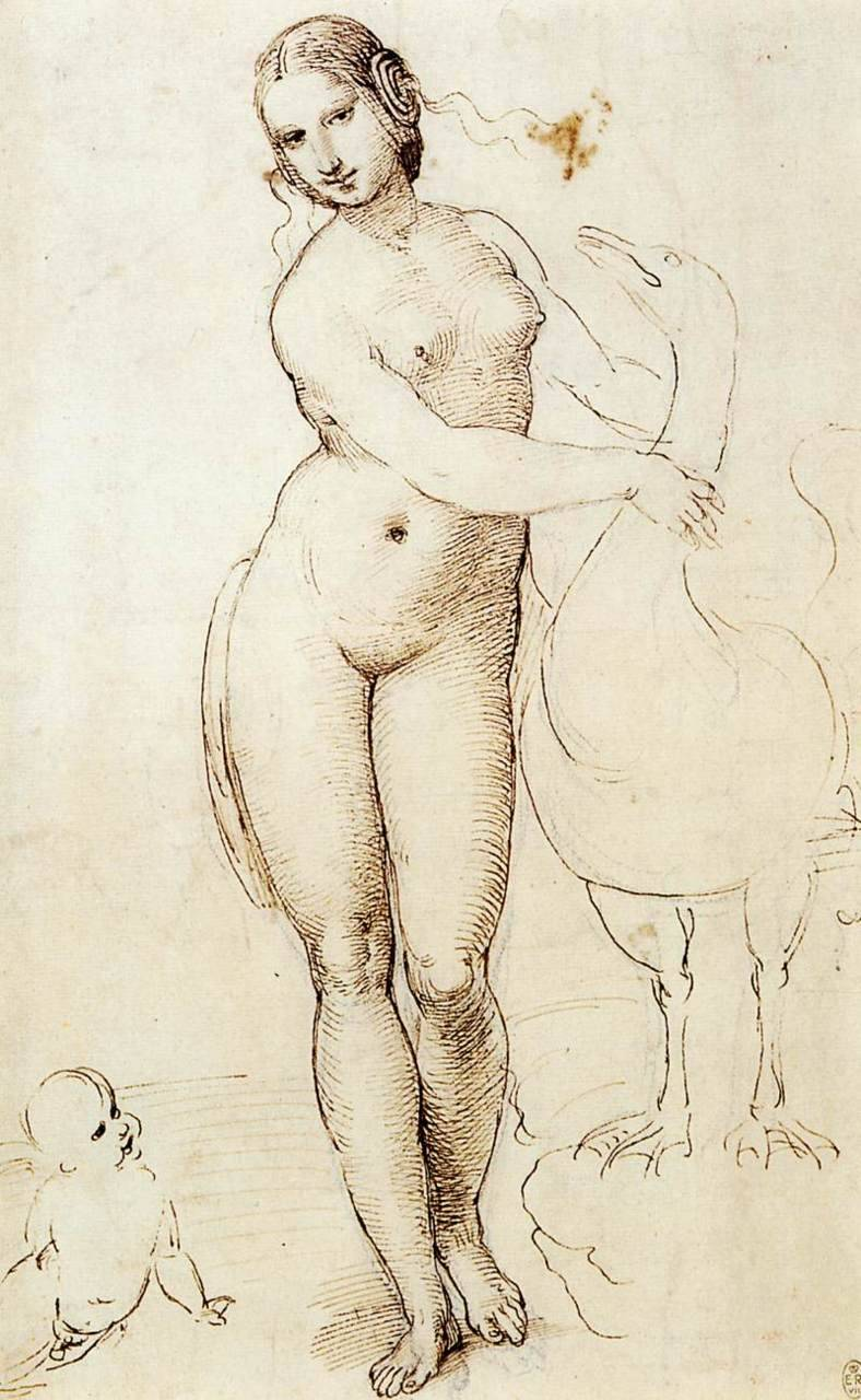 Leda and the Swan (1505-07) by Raphael Leonardo's innovations were crucial to Raphael's development. This is strongly evident in the finished paintings as well as in the drawings that survive. An impressive example exists in Raphael's delicate and superbly rendered drawing of Leda and the Swan, copied from a painting by Leonardo that was famous in its time, but now lost. (via Web Gallery of Art, image collection, virtual museum, searchable database of European fine arts (1000-1850))