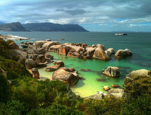 waterlilyjewels:  Boulder's Beach, South Africa (by slack12)