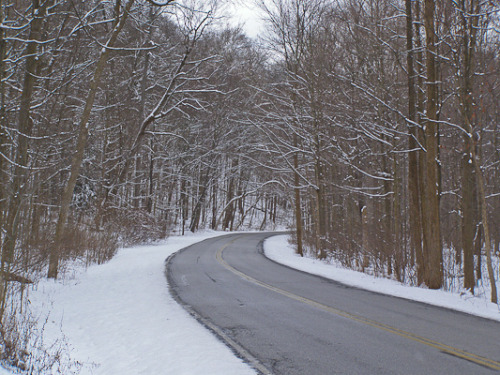 Snowy Drive on Flickr.Cleveland Metro Parks after a Spring snow, 2007.