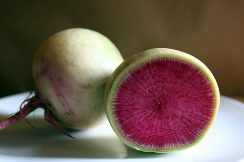 ahh the watermelon radish! i will make a sorbet out of you one day…soon! along with some Daikon! :D <3 we made a sorbet out of watermelon today but my vision was with watermelon radishes, so i wasnt too stoked.. the radish just tips it off to some next level shit! ya know like some iron chef- wait for it-LEGENDARY-cooking skills shit! <3