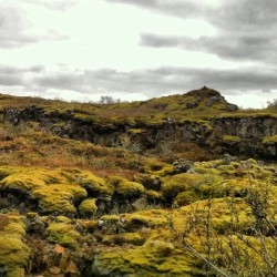 Lat of the Land #Iceland (Taken with instagram)
