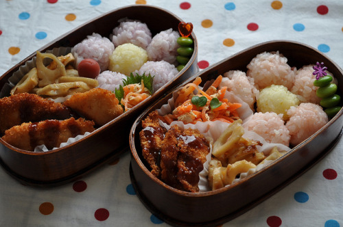 Bento sasaq:  2011.01.20-1 by babykins. on Flickr. Blogged here.