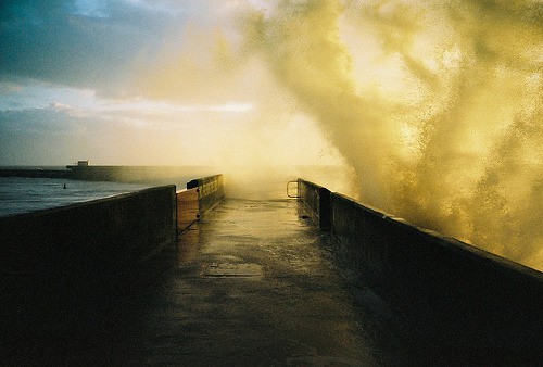 film-grain:  brighton marina wall (by lomokev)