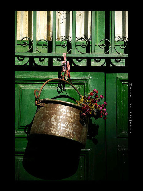 elinka:  Flowers in the Green door. By: Marta Eva LLamera