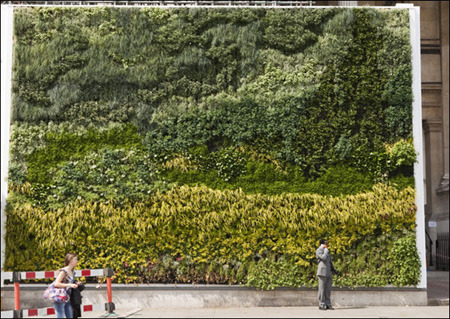 Van Gogh's, A Wheatfield, with Cypresses recreated as a living wall One of Van Gogh's most famous paintings, A Wheatfield, with Cypresses,  has been recreated as a living wall on the exterior of the National Gallery  in London. (via Landscape Juice)