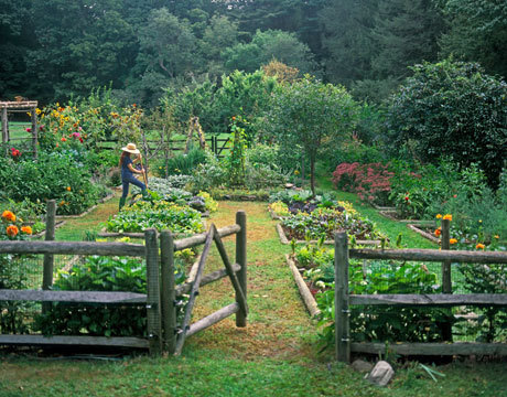 The beautiful organic kitchen garden of Pamela Page in Connecticut appears on the Country Living website. Kitchen Garden - Organic Herb Kitchen Gardening - Country Living)
