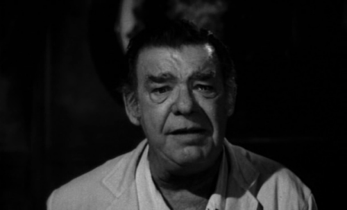 Lon Chaney Jr. inSpider Baby (1968)