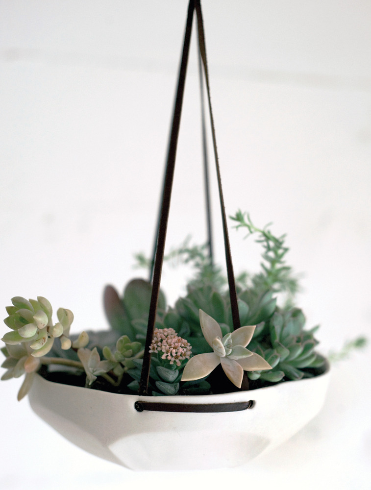 I really like succulents. I wish I could keep them alive indoors.  via Leif.