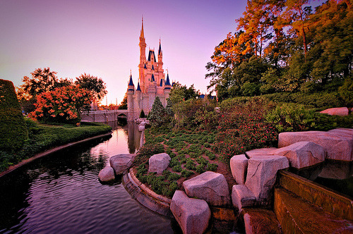 -cityoflove:  Walt Disney World, Florida