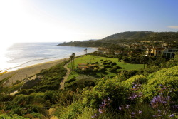 photopillar:  363  view of salt creek state beach from the ritz carlton