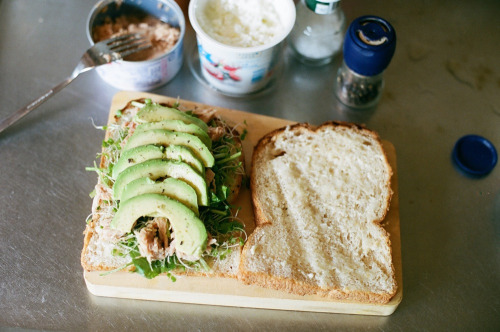 """sandwich with avocado, tuna, cottage cheese, alfalfa sprout, spinach"""